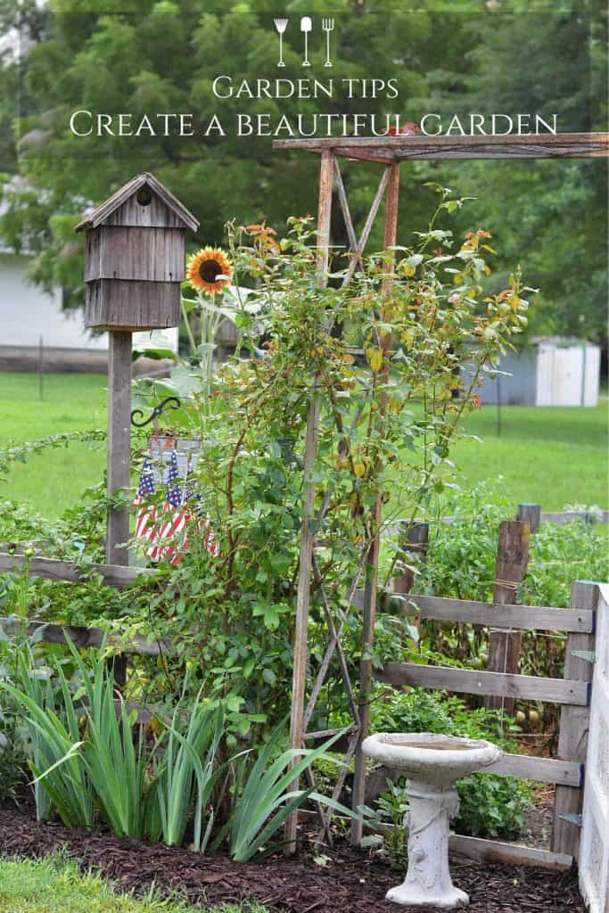 Creating a Vegetable Garden on a Budget