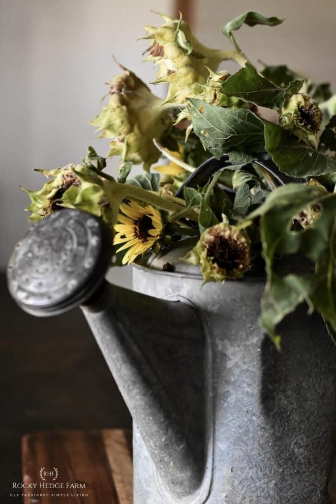 The Secret to Drying Sunflowers