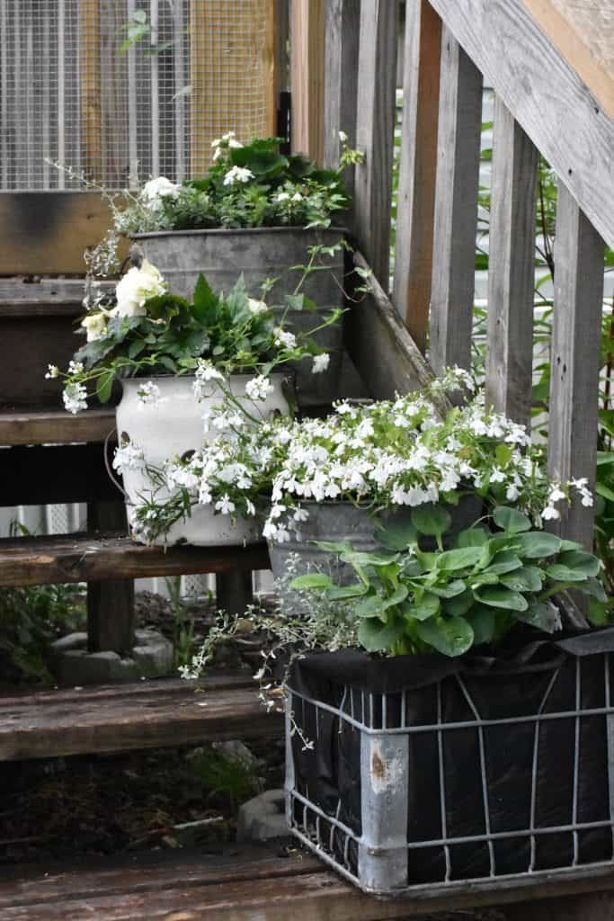 Vintage Front Porch Galvanized Garden Tub Planters