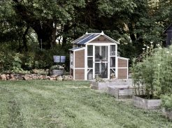Chicken Coop Landscape Ideas