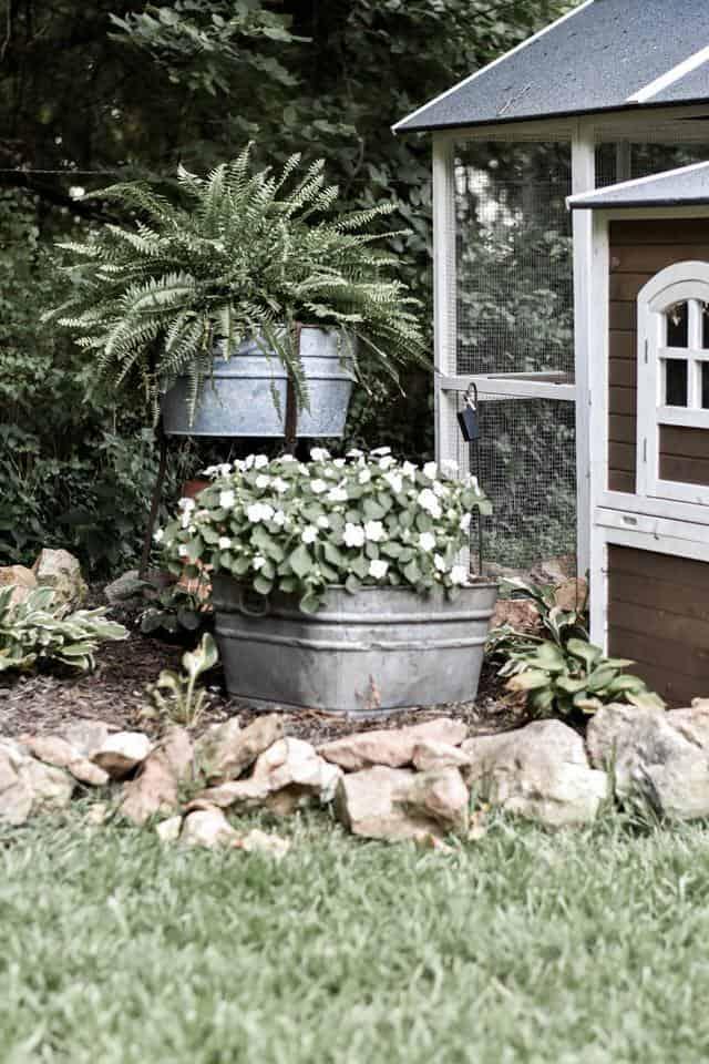 The Best Shade Perennials for Woodland Gardens