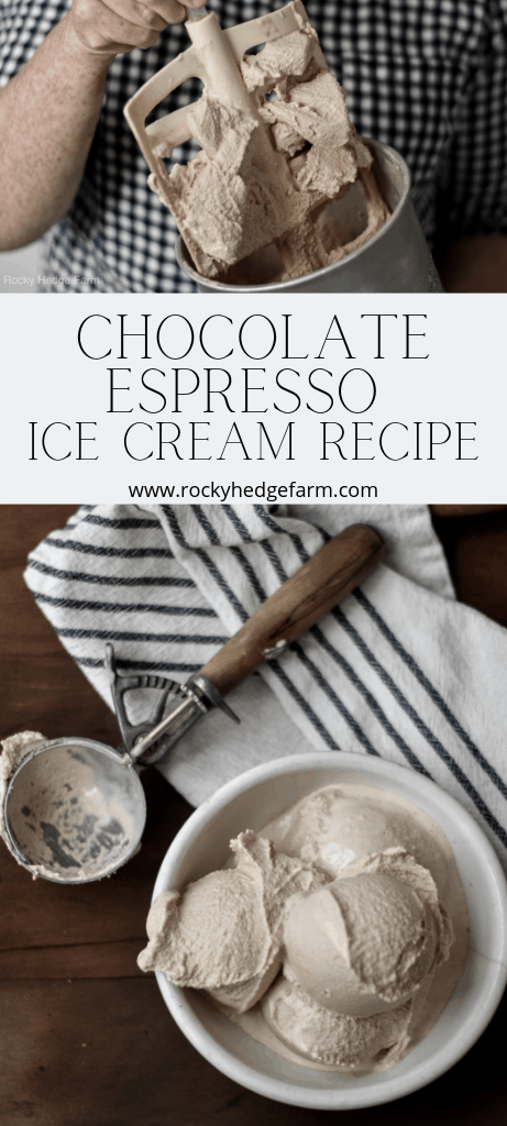 Low Carb | Keto | Trim Healthy Mama | THM | Chocolate Espresso Ice Cream Recipe