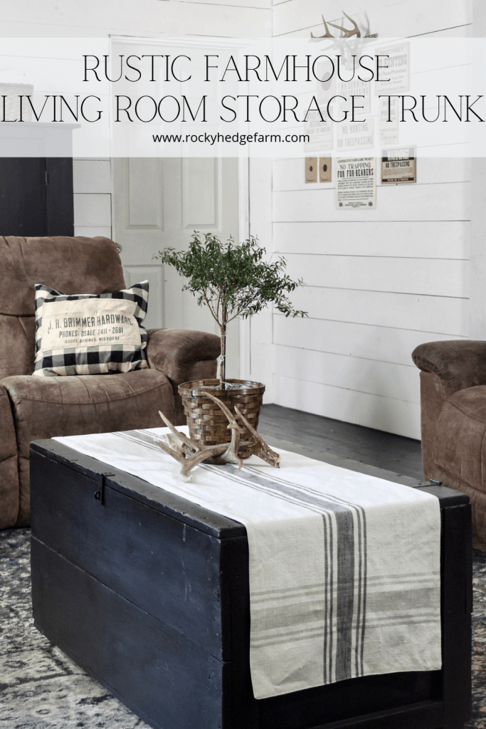 Rustic Farmhouse Living Room Storage Trunk