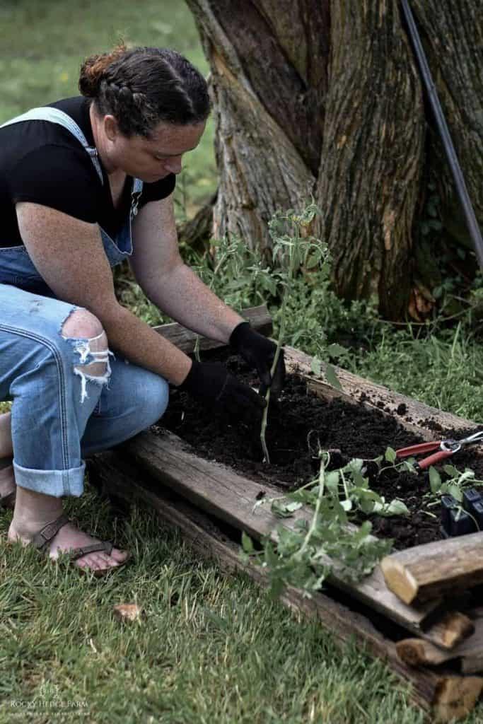 a lady gardener