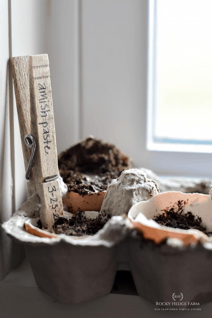 Cheap Ways to start Seeds