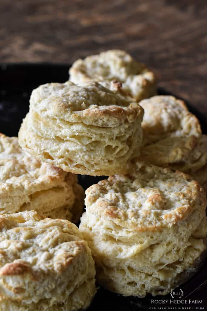 Flaky and Fluffly Buttermilk Biscuits