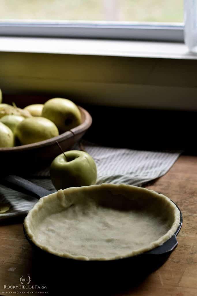 Favorite Homemade Apple Pie