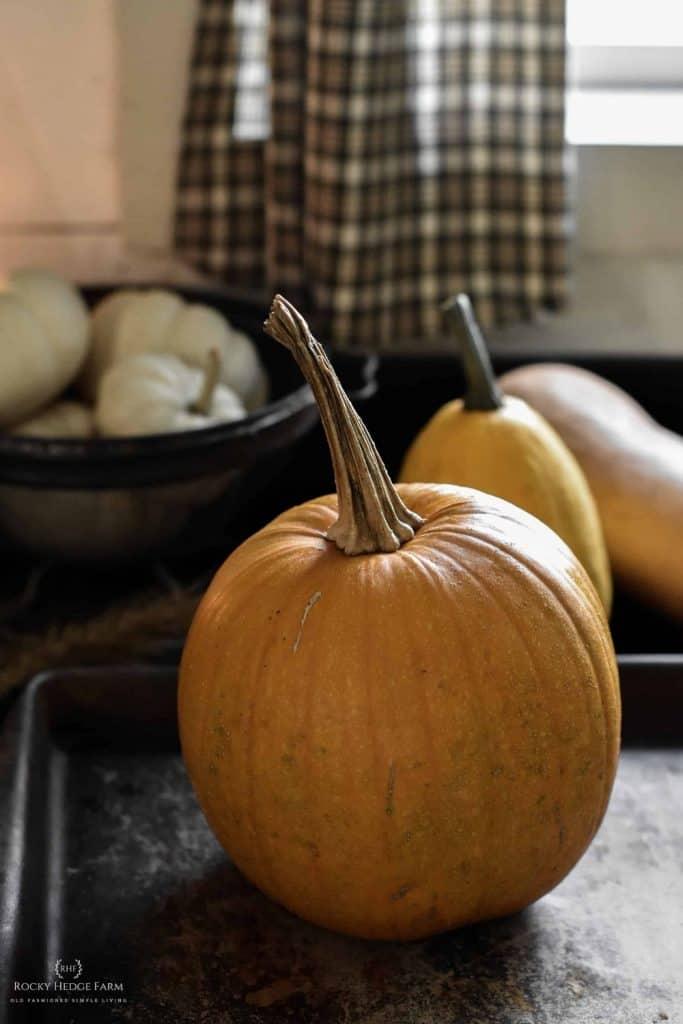 Pumpkin Puree for Pie