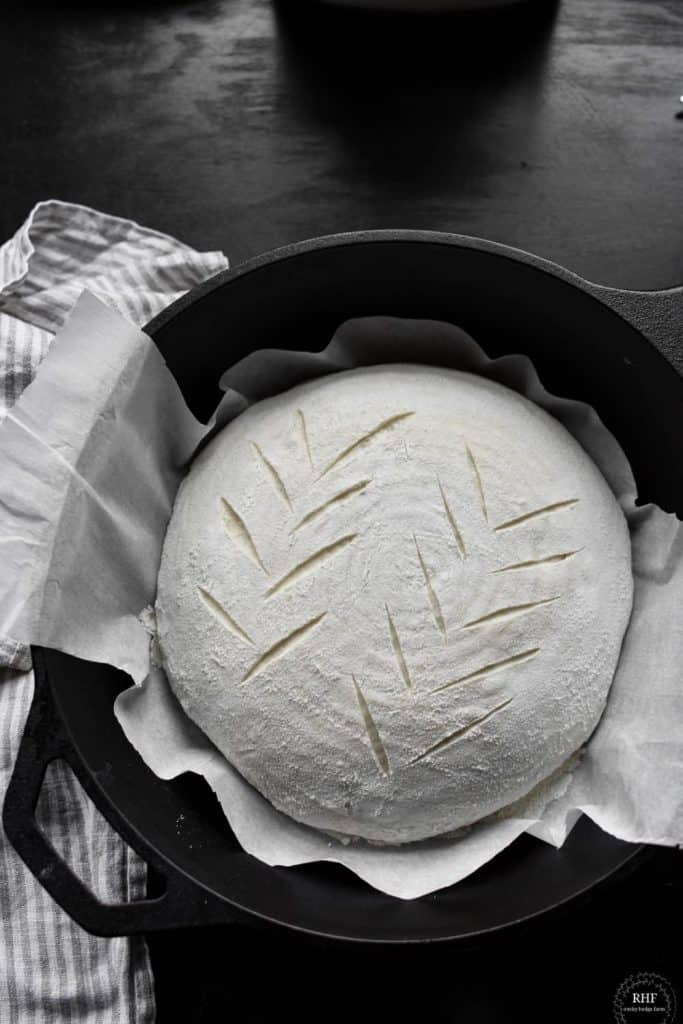 baking sourdough recipe in dough oven