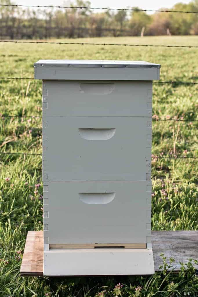 Langstroth Beehive Structure