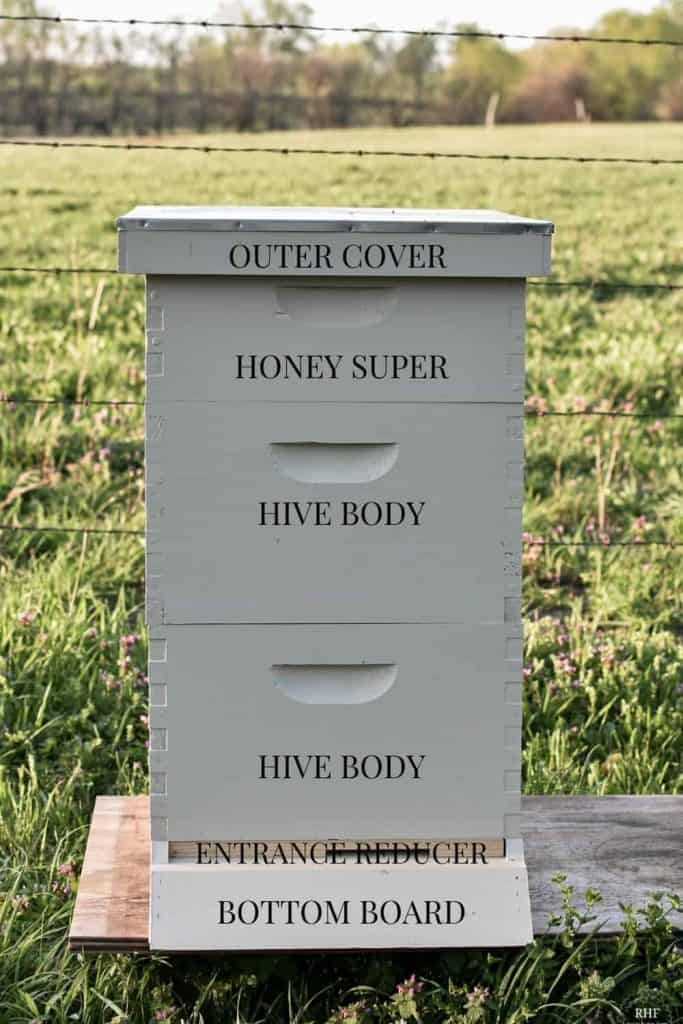 Structure of a Hive