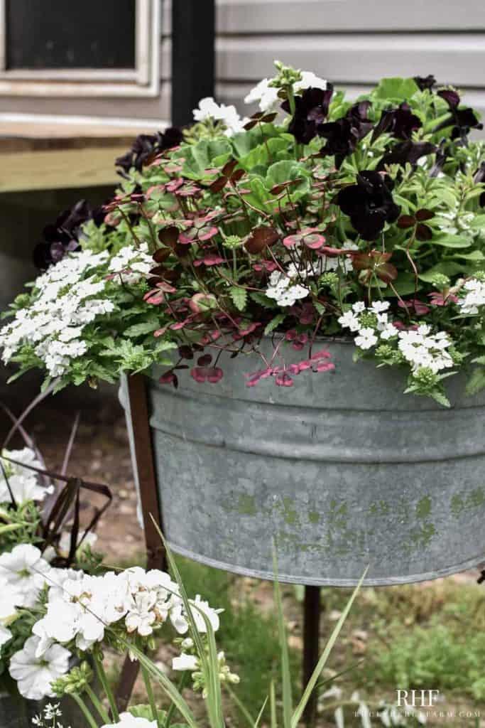 washtub planter idea