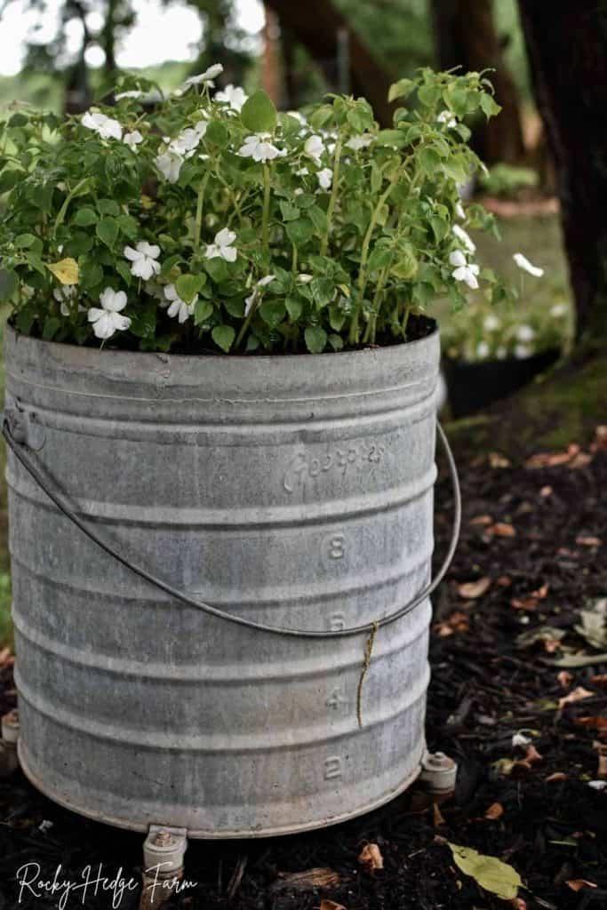 round galvanized wash bucket planter