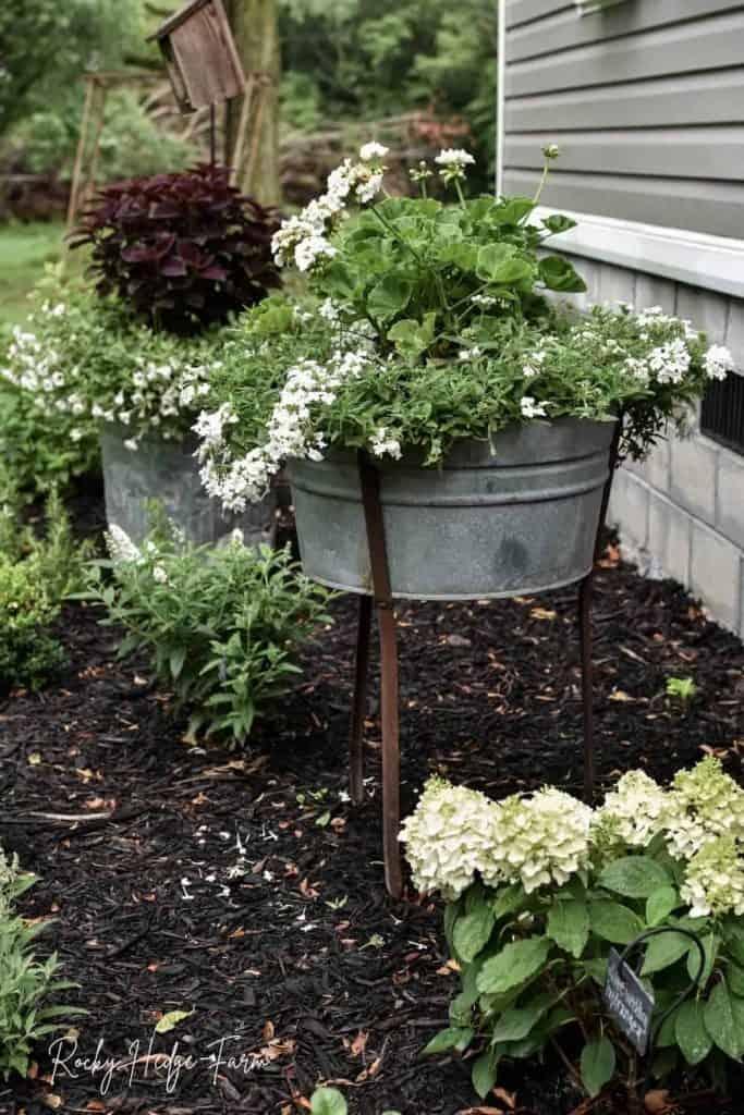 wash tub planter ideas