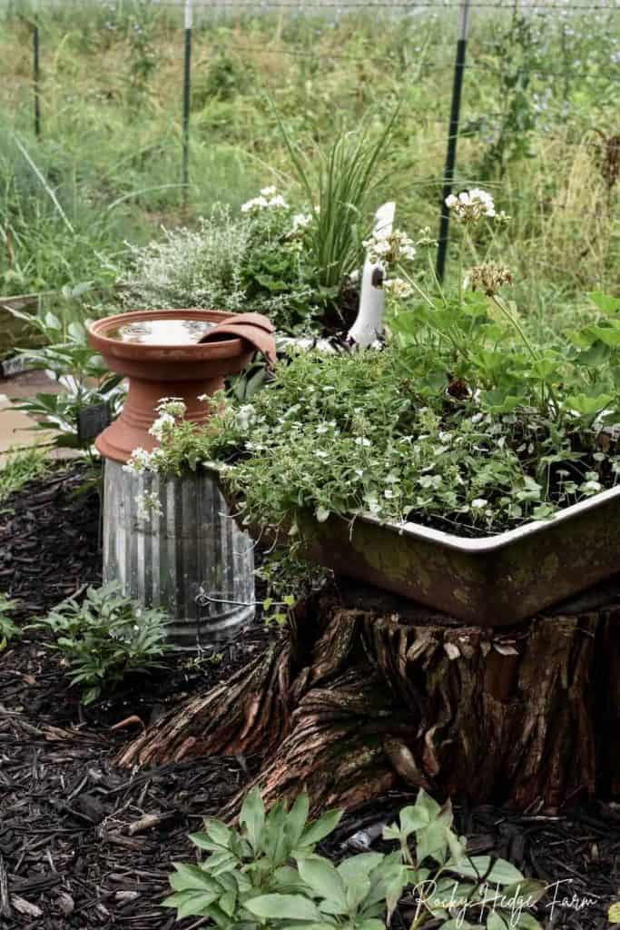 sink planter for flowers