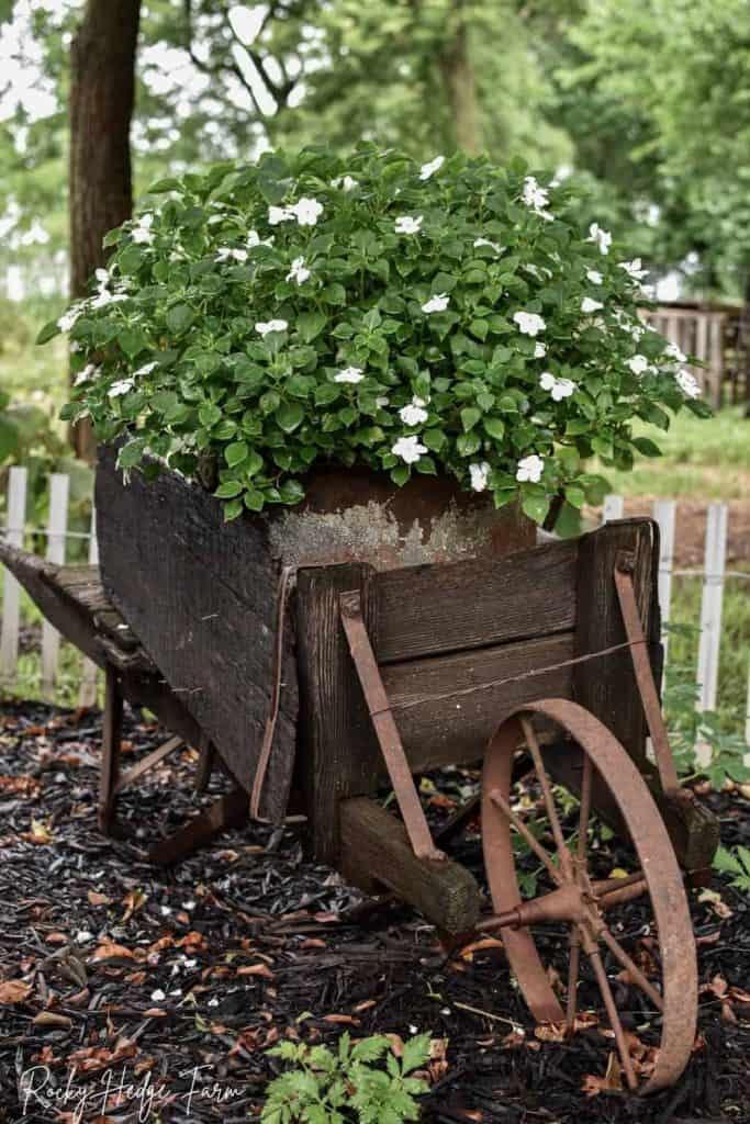 wooden wheelbarrow planter