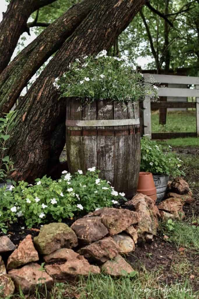 barrel planter for flowers