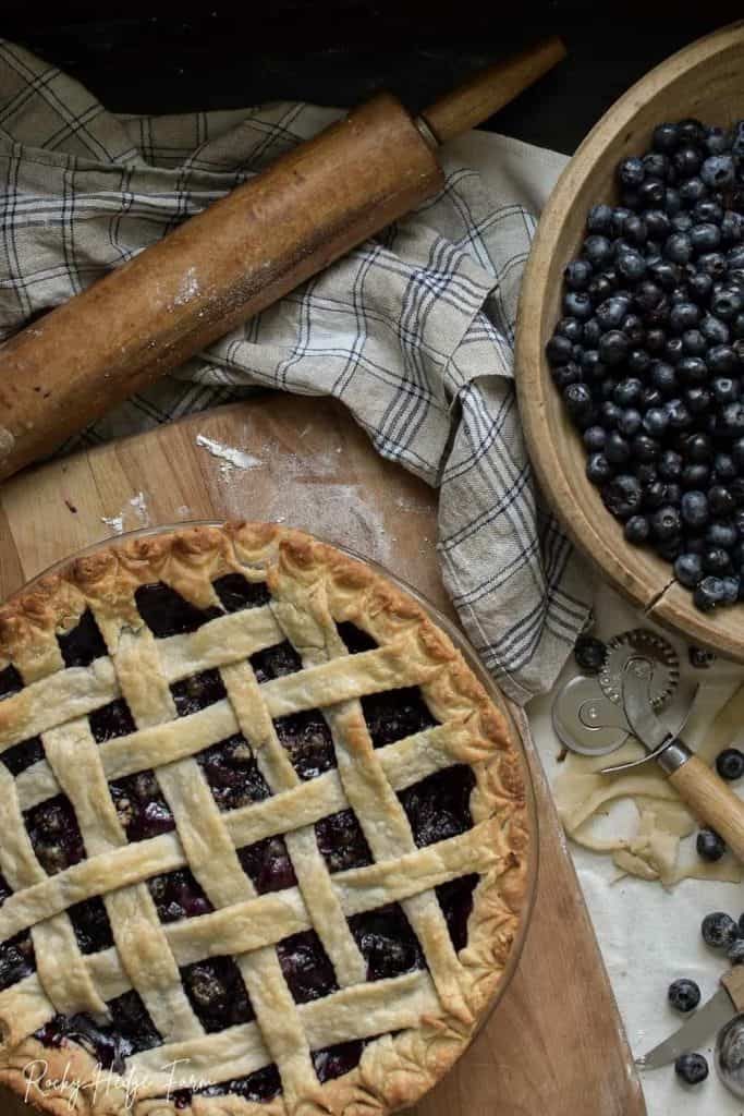 Blue Ribbon Blueberry Pie