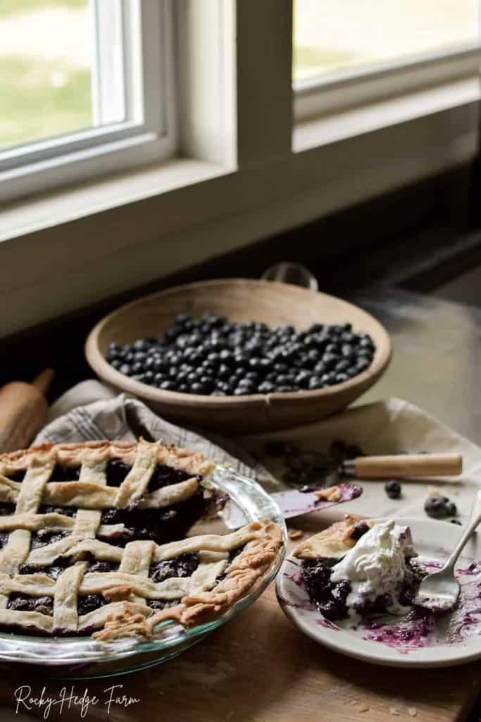 Contest-Winning Fresh Blueberry Pie Recipe