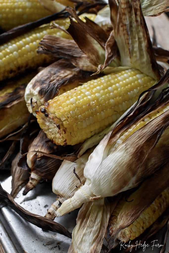 Fresh Grilled Corn
