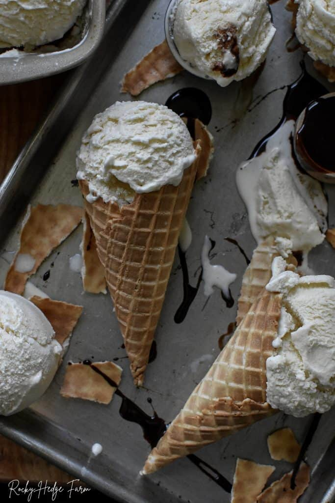 Vanilla Ice Cream No Eggs