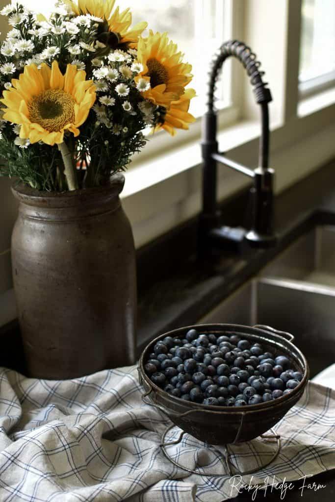Summertime Blueberries